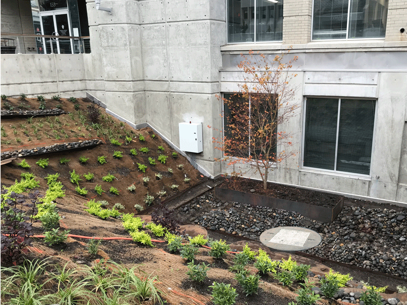 Completed Stormwater Pump Station